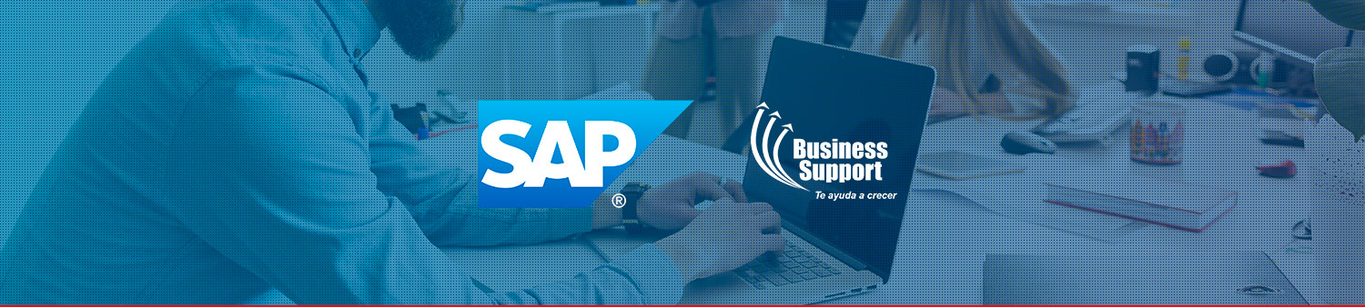 Banner_SAP_business_support